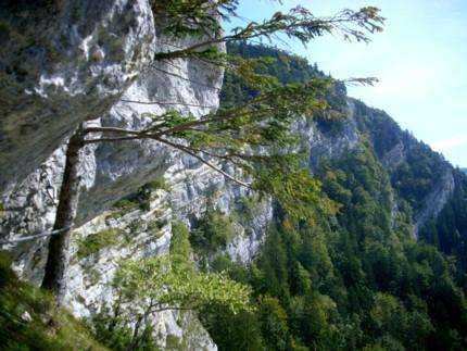 Klettersteig Jura : Klettersteig jura senkrecht nach oben klettersteige im