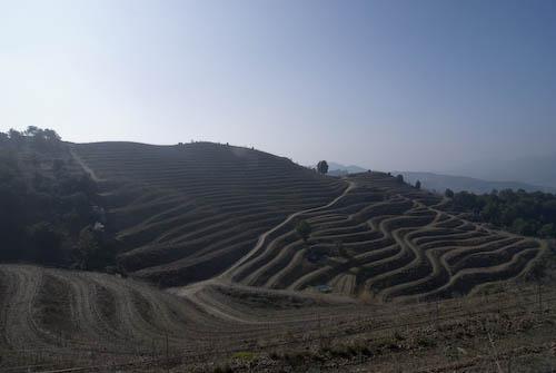 Bodegas Mas Alta, La Vilella Alta, Priorat, Spanien, Wein
