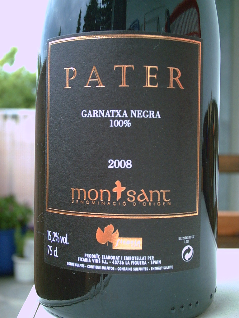Pater 2008