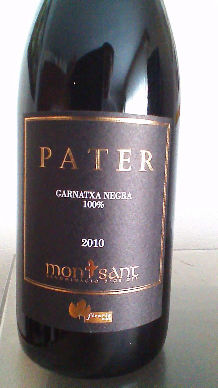 Pater 2010