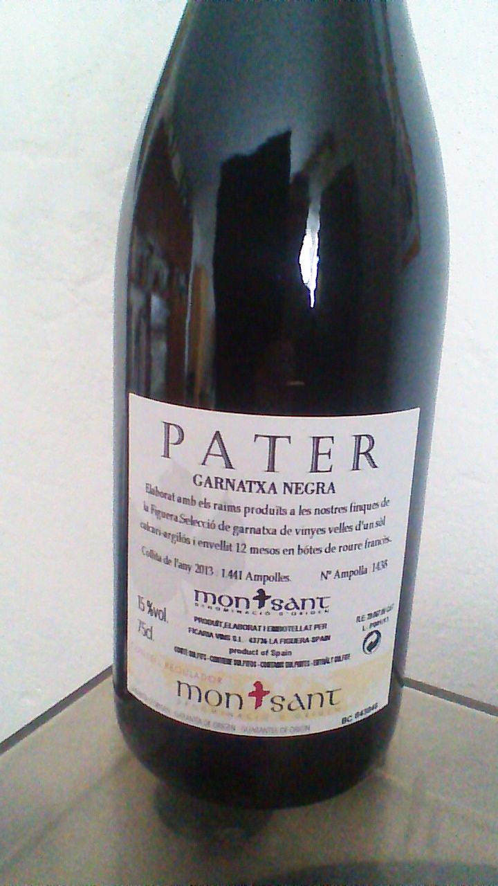 Pater 2013 R